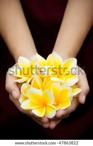 a bunch of yellow tropical flowers on woman hands