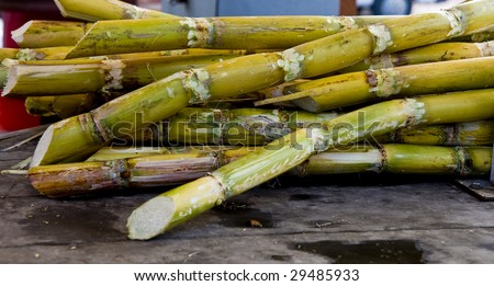 A bundle of green sugar cane in a market