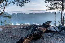 A burnt log lies on the edge of the rocky shore of a quarry against a picturesque landscape. Fog over the quarry filled with clear blue water on a summer evening, at dusk. Close-up