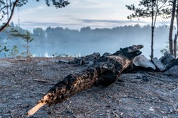 A burnt log lies on the edge of the rocky shore of a quarry against a picturesque landscape. Quarry filled with clear blue water on a summer evening, at dusk. Side view