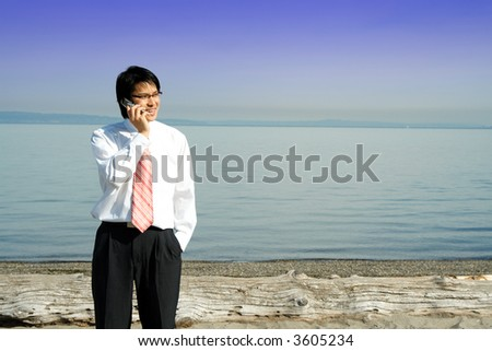 A businessman talking on the cell phone at the beach