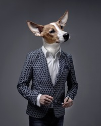 A Businessman  With A Dog Head, Jack Russell Terrier Wearing A Suite Over Isolated Background.