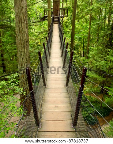 A cable supported suspension bridge takes tourists high above the forest floor on a walkway adventure near Vancouver, BC Canada
