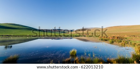 Stock Photo A calm, clear winter morning panoramic view looking over a lake with sheep grazing in the distant rolling farmland of the Overberg in South Africa. Ultra-wide format.