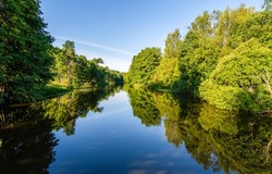 A calm river in a green forest. Forest river landscape. Forest river reflection. River in forest