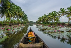A canoe at the backwaters of kerala, india