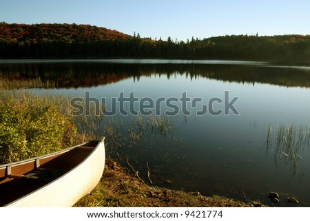 A canoe cast in the bright morning sunlight in Algonquin provincal park, in Ontario, Canada.