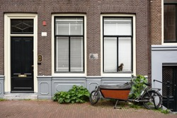 A cargo bike fastened to the fence near the wall of a brick house with a black door, two windows and a cat sitting in one of them and waiting for his owner