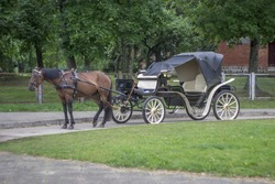 A cart with a horse in the Park