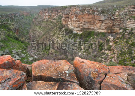 a carved gorges landscape with a scantily clad vegetation and river cascading through the rough desert rocks #1528275989