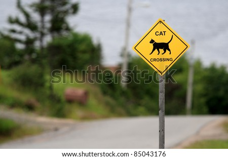 A cat crossing sign in Woody Point, Newfoundland, Canada. - stock photo