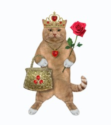 A cat reddish in a gold crown and a ruby heart shaped pendant holds a handbag and a red rose. White background. Isolated.