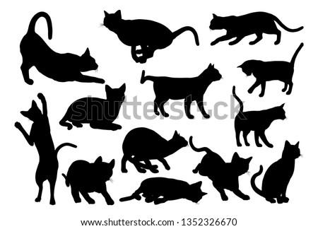 A cat silhouettes pet animals graphics set