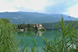 A catle by the lake. Location: Europe, Italy, Lago di Santa Massenza