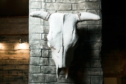A cattle skull hangs on a gray, brick wall.