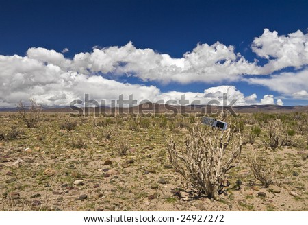 A cellphone abandoned on a dead plant in the desert.