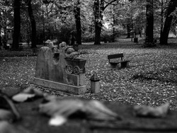 a cemetry in autumn, leaves are falling