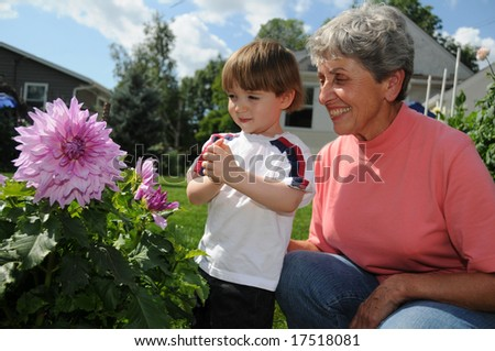 A champion dahlia grower shows off one of her flowers, a Penn's gift dahlia, to her cute little grandson - stock photo
