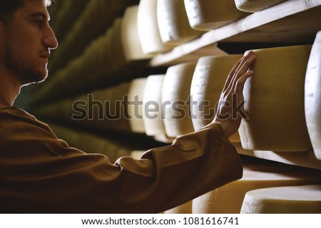 A cheesemaker controls the seasoning of the Parmesan cheese, which has to season for many months,. The processing is done following the ancient Italian tradition.