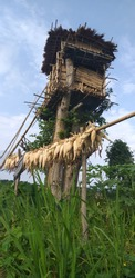 A.chik bamboo house from meghalaya