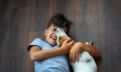 A child, a boy of 9 years old plays on the floor with a dog breed Jack Russell. The boy makes emotions. world children's day