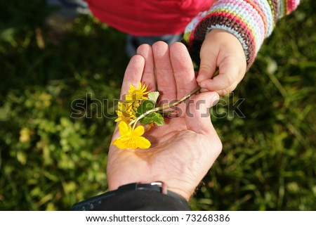 A child give its a parent a spring flower