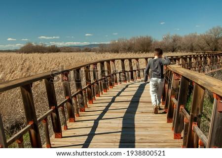 A child hiking trough a wooden bridge over a lagoon at the Tablas de Daimiel National Park, Biosphere Reserve since 1981, Castilla-La Mancha, Spain Foto stock ©