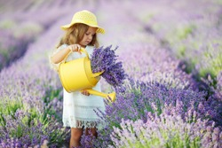 A child in a field with flowers. Little girl resting in a lavender field.
