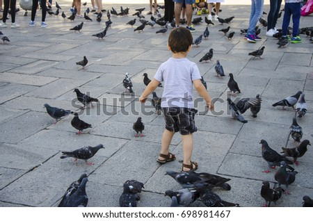 A child plays with pigeons