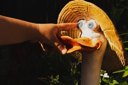 A child's hand, a child's index finger shows the eye of a statuette of a goose in a straw hat in a summer garden.