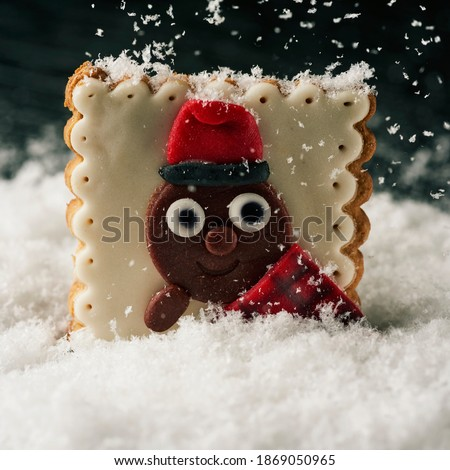 a christmas cookie in the shape of a tio de nadal, a christmas character typical of catalonia, spain, on the snow while is snowing Zdjęcia stock ©