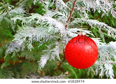 A Christmas holiday ornament in a snow covered live Christmas tree for your use with room for your text.