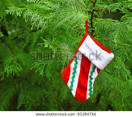 A Christmas Stocking hanging from a Christmas tree with room for your text.