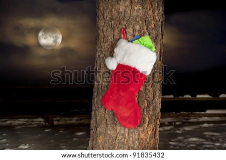 A Christmas stocking hanging on the trunk of a pine tree with snow and an amber glowing moon and sky.