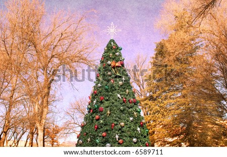 A Christmas tree isolated on a textured background.