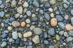 A ckise-up shot of rocks on the shoreline.