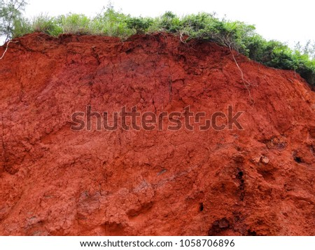 A cliff of dry red dirt along a road on Maui, Hawaii shows a crown of greenery, fresh green grass and shrubs, a interesting natural background texture. #1058706896