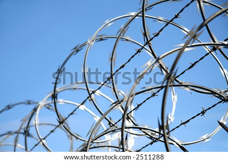 A close shot of razor wire on a fence