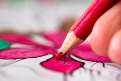 A close up macro portrait of fingers of a hand holding a red wooden pencil coloring in a flower in a coloring book for adults. The color is nicely drawn in between the lines of the drawing.