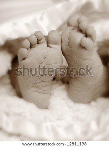 A close-up of a newborns feet