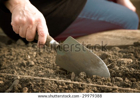 A close-up of a woman's hand holding a trowel and digging into the earth.