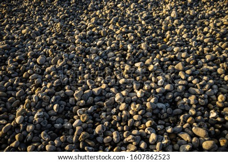 A close up of pebbles. Sea pebbles. Background of pebbles. Wet stones. Multi Colored pebbles. Sea shore.