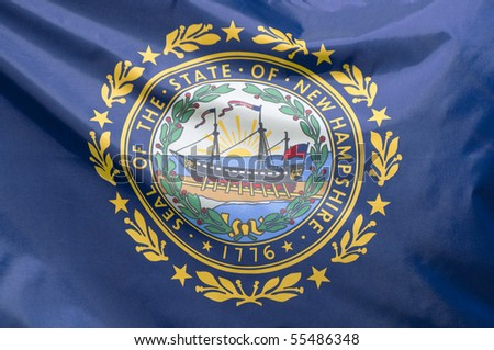 A close-up of the New Hampshire state flag waving in the wind.