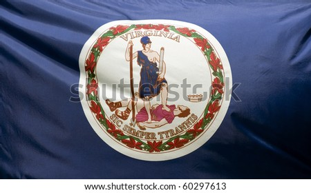 A close-up of the Virginia state flag waving in the wind. - stock photo