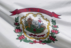 A close-up of the West Virginia state flag waving in the wind.