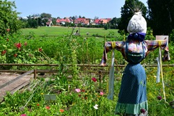 A close up on a scarecrow made out of hay and sticks and then being dressed with a skirt and a blouse guarding a vast well maintained garden full of herbs, flowers, and vegetables seen in Poland