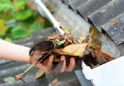 A close-up on cleaning the clogged roof gutters by hand from dry fallen leaves in autumn.