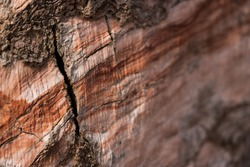 A close up shoot of the striations and textures of some of the mineral deposits that occur in the North Texas canyon region.