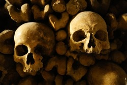A close-up shot of scary spooky human skulls and bones in the underground ossuary