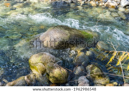 A close-up shote of clear water flowing over rocks in Denny Creek in Washington State. Zdjęcia stock ©
